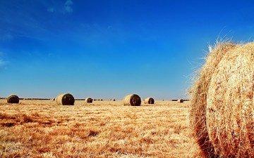 небо, поле, солома, тюки