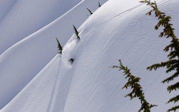горы, снег, спуск, зима, скорость, адреналин, елки, сноуборд, сноубордист