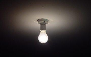 свет, лампочка, легкие