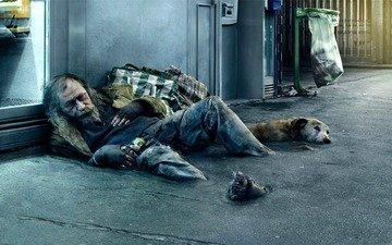 people, dog, street, beggar, homeless