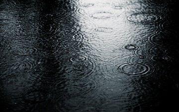 природа, капли, чёрно-белое, холод, дождь, лужа