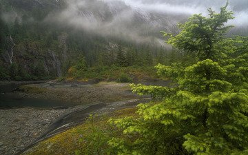 река, туман, аляска