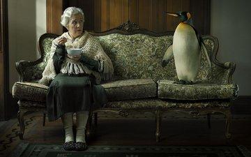 penguin, sofa, grandma
