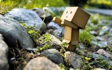 природа, камни, зелень, цветок, робот, игрушечная, danboard, данбо, одуваньчик, цветком, короб