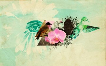 abstractia, flower, birds, eyes, collage