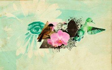 абрстракция, цветок, птицы, глаз, коллаж