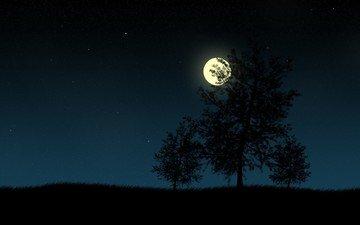 ночь, деревья, вектор, луна