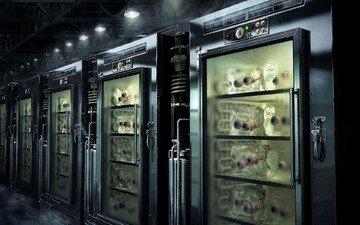 warehouse, refrigerator, bodies