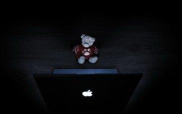 свет, медведь, игрушка, ноутбук