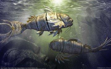 вода, рыбки, статуя