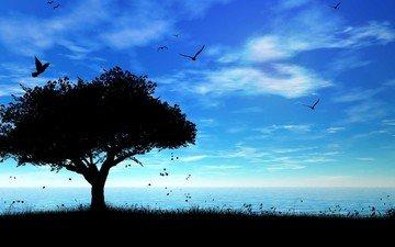 небо, дерево, море, тень, птички