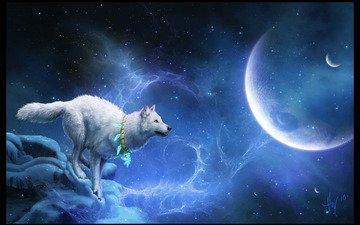 звезды, планеты, белый, волк, мистика