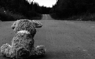 дорога, обои, медведь, чёрно-белое, разное, картинка, асфальт, изображение, плюшевый