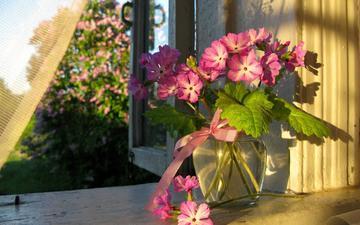 цветы, лето, окно, ваза, занавеска