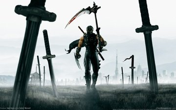 art, warrior, field, battle, ninja, cloak, braid, swords, heroes, ninja gaiden 2, katana