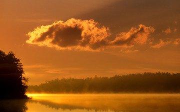 свет, деревья, вода, озеро, река, обои, фото, туман, пейзажи