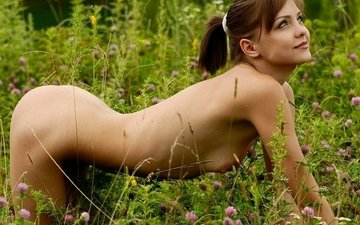 grass, clover, girl, meadow, chest