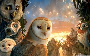 owl, legend of the guardians, legend of the guardians: the owls of ga hoole, owls