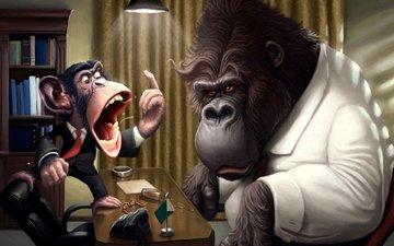 офис, обезьяна, горилла