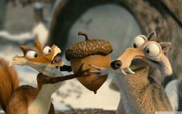 fox, ice age, protein, walnut