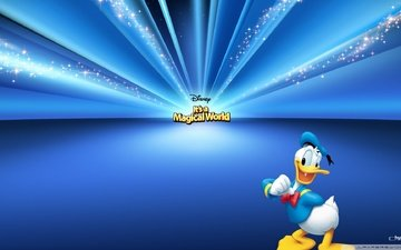 disney, donald duck