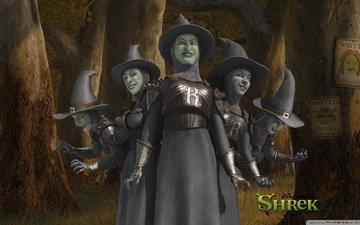 witches, shrek