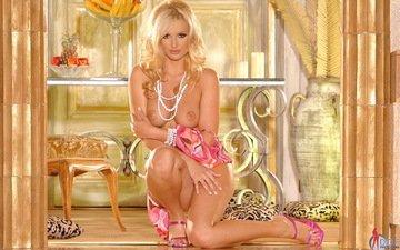 блондинка, грудь, обнаженная, sandra shine