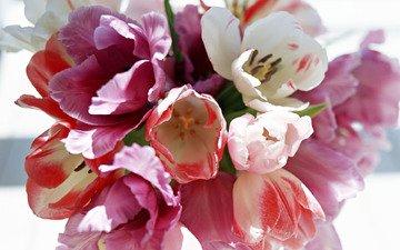 весна, букет, тюльпан, 8 марта