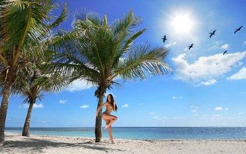 солнце, девушка, море, песок, пляж, пальмы, обнаженная