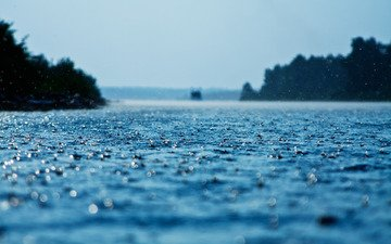 обои, макро, фото, капли, дождь