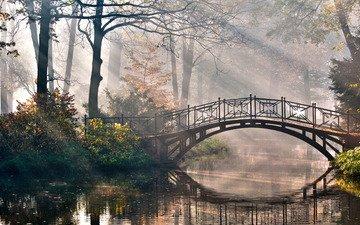деревья, природа, мостик, лучи, парк, кусты, романтика, речка