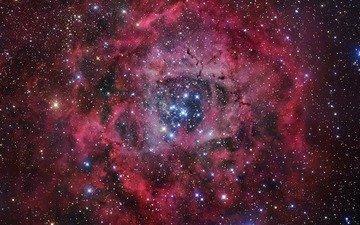 звезды, туманность, rosette nebula