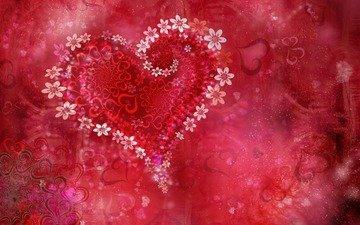 цветы, сердце, праздник, день валентина, valentine flowers