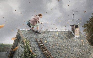 листья, инструмент, ветер, крыша, бабка