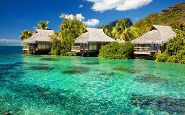 вода, природа, море, пальмы, бунгало, тропики, вилла, гостиница