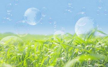 мыльные пузыри, зеленое поле