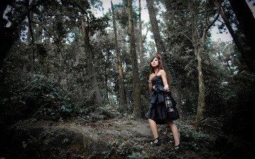 лес, девушка, платье, фонарь, японка, азиатка