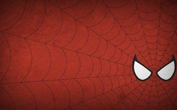рисунок, минимализм, паутина, человек-паук, человек паук