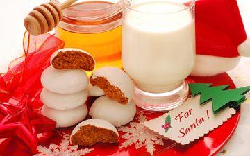 красавица, праздник, расцветка, водопой, выпечка, красива, for santa, классная, рождественское печенье, елочная