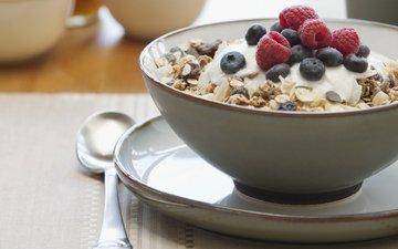 еда, черника, завтрак, сладкое, мюсли малина, изюм