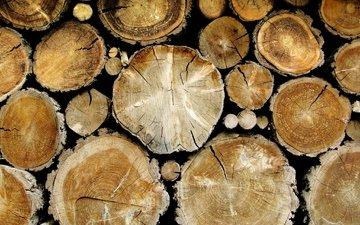 дерево, бревна
