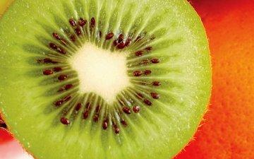 фрукт, киви