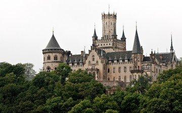 деревья, замок, башни, здание, шпили, германия, marienburg castle, hannover, ганновер, красивый замок, неоготический, мариенбург