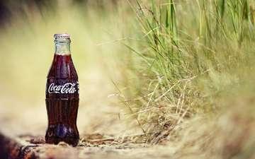 напиток, бутылка, кока-кола
