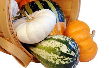 белый фон, овощи, тыква, короб
