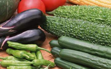 кукуруза, овощи, помидоры, баклажаны, разные, перец, цукини