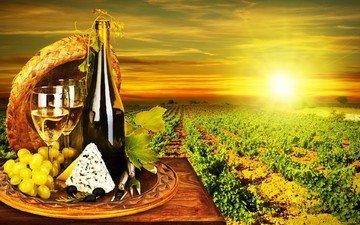 солнце, виноград, сыр, вино, бутылка, бокалы, виноградная лоза, виноградник, маслины, вино белое, дор блю