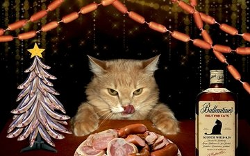 морда, новый год, кот, усы, мясо, язык, бутылка, праздник, гирлянда, колбаса, выпивка, сосиски, кот за столом, пир, обжора, домашний питомец, нарезка, елка-рыбки