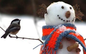 снег, новый год, орехи, зима, снеговик, птица, арахис, синица, шарф, веточки