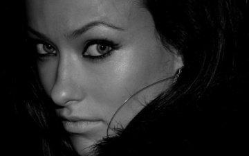 взгляд, чёрно-белое, актриса, оливия уайлд, оливия yайлд